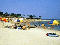 サンライズビーチ